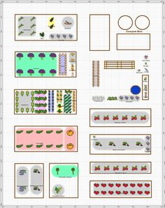 Garden Plan - 2013: Monicas Allotment