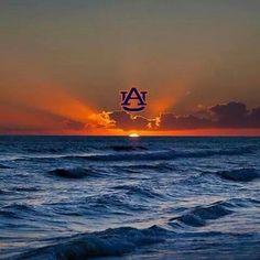 "As far as the eye can see, ""WarDamnEagle! Football Rules, Auburn Football, Auburn Tigers, College Football, Auburn Quotes, Auburn Memes, Auburn Logo, Auburn Vs, Southern Heritage"