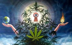 It is a well-known fact that the pineal gland responds to psychoactive drugs, but what really happens to the 3rd eye when we use cannabis? THE PINEAL GLAND The Pineal Gland or the 'Seat of the Soul' as described by Rene Descartes, is the focal point of our spiritual guiding system which makes us go …