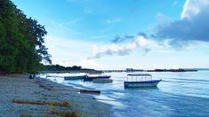 Neil Island is an untouched paradise with 3 beautiful beaches, mesmerizing scenic vistas, and hub of water sports.