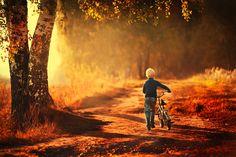 autumn gold by NATALIA ZHUKOVA on 500px