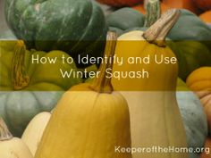 How to Identify and Use Winter Squash