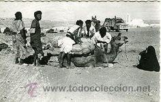 Postales: AAIUN (SAHARA ESPAÑOL).- LLEGADA AL DESIERTO.- EDICIONES GUERRERO Nº 486.- FOTOGRÁFICA - Foto 1 - 28378276