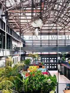 The colour palette of the architectural elements in this warehouse conversion was restricted to black and white, drawing attention to planting and brightly hued furniture.