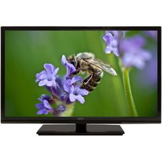 Black Friday 2014 Seiki LED HDTV (Black) from Seiki Cyber Monday. Black Friday specials on the season most-wanted Christmas gifts. Amazon Black Friday, Best Black Friday, 32 Inch Tv, Cheap Tvs, Lcd Television, Audio, Electronic Deals, Black Friday Specials, Papillons