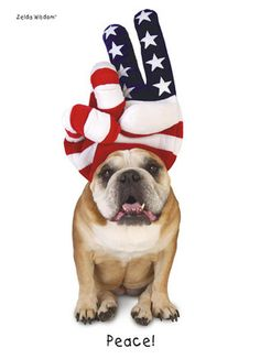 4th of July Peace Sign Bulldog 5x7 Folded Card by Zelda Wisdom