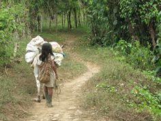 Tayrona Indianen in de oerwouden van Colombia.