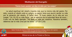 """MISIONEROS DE LA PALABRA DIVINA: MEDITACIÓN DEL EVANGELIO - """"Como buen pastor, yo d..."""
