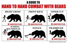 9 Useless Tips That Can Save Your life If a Bear Ever Attacks You - World's largest collection of cat memes and other animals Funny Facts, Funny Signs, Funny Jokes, Funny Shit, Funny Stuff, Funny Cartoons, Hilarious, Wild Animals Attack, Animal Attack