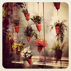 Cute window display with flower pots. What a great idea for the porch or hanging in a picture window at home :>