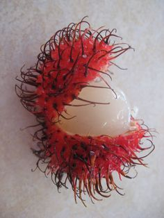 Lychees!  Best fruit ever!!!! Honduras Fruit!  | You break them open and inside hides a tasty white fleshed fruit