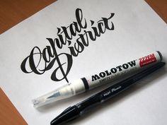 calligraphy / Royal Practices by Evgeny Tkhorzhevsky