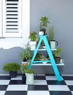 paint ladder to plant stand ~ loving the colors and the floor.