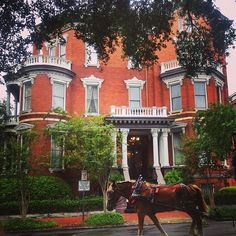 Take a stroll in Savannah…