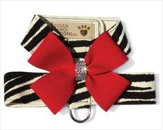 Gorgeous small dog harness by Susan Lanci Designs. This Tinkie-style harness is called Nouveau Bow, and it doesn't stop here. There's matching Step-In harnesses