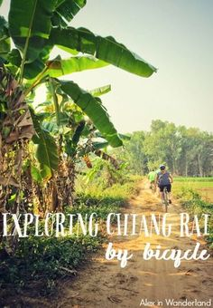 A fun an active way to explore the city of Chiang Rai and surrounding area in northern Thailand is by bicycle! | Alex in Wanderland