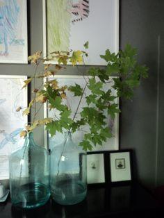 Leaf arrangement in blue glass water jugs Glass Water Jug, Water Jugs, Glass Vase, Interior Styling, Bucket, Leaves, Interiors, Living Room, Blue