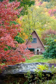 Maggie Valley, NC mountains Chalet (info & rates)
