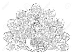 Peacock Coloring Pages For Adults Peacock Coloring Pages For Adults Color Bros Peacock Drawing, Peacock Art, Mandala Drawing, Mandala Art, Peacock Design, Peacock Pattern, Peacock Colors, Peacock Coloring Pages, Mandala Coloring