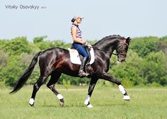 - фотографии - Vitalistyle (Осовский) - конники - equestrian.ru