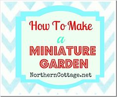 how to make a mini garden @ northern cottage Mini Fairy Garden, Fairy Garden Houses, Mini Plants, Fruit Plants, Porches, Small Gardens, Mini Gardens, Garden Care, Miniature Fairy Gardens
