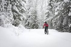 Winter Fat Biking: Pedal All Year Long in Cottage Country Ontario Cottages, Fat Bike, Winter Activities, Mountain Biking, Snow, Explore, Country, Outdoor, Google Search