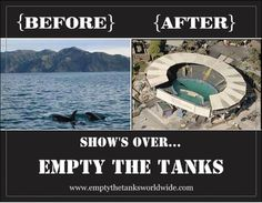 Join an Empty the Tanks event near you!  We are only one day away from the worldwide Empty the Tanks event. Please join an event near you! We need to stand together and give a voice to the marine mammals trapped in parks around the world.
