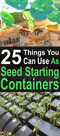 25 Things You Can Use As Seed Starting Containers. DIY ideas for containers for your starting your seeds indoor. Spring gardening is a great way to bring organic food to your homestead. #Homesteadsurvivalsite #Springgarden #Garden #Seedcontainers #DIY #Seedstarting