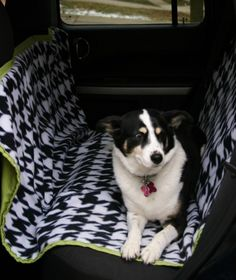 Backseat Car Cover- protects upholstery, keeps the dog on the seat, protects anything stored on the floor, and prevents the dog from crawling up front between the seats!