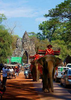 Ankor Wat transport . Cambodia