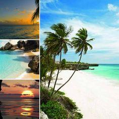 Barbados 😍🌴und Wasser
