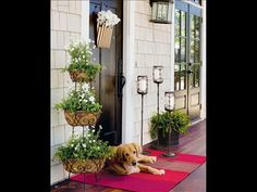 Make a Grand Entrance! Fun tips for enhancing the gateway to your home!