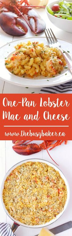Frugal Food Items - How To Prepare Dinner And Luxuriate In Delightful Meals Without Having Shelling Out A Fortune This One-Pan Lobster Mac And Cheese Is The Perfect Father's Day Feast Www. Fish Recipes, Seafood Recipes, Great Recipes, Cooking Recipes, Favorite Recipes, Cheese Recipes, Pasta Recipes, Recipies, Seafood Mac And Cheese