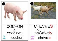 Organisation spatiale petite section tni en maternelle - Imagier animaux de la ferme ...