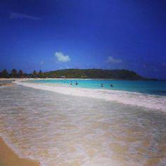 Puerto Rico (Vieques Island) - Christmas 2013!