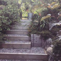 Sloped Garden, Blue Ridge, Garden Inspiration, Balcony, House Ideas, Stairs, Walking, Gardening, Plants