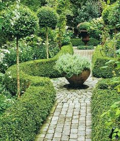 see this done with a red brick pathway, Lavender hedges instead of stinky Boxwood and a Rosemary topiary or Golden Bay tree in the bowl planter. Formal Gardens, Outdoor Gardens, Amazing Gardens, Beautiful Gardens, Dream Garden, Garden Path, Garden Spaces, Back Gardens, Topiary