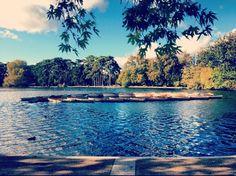 Lac inférieur - Bois de Boulogne - Paris