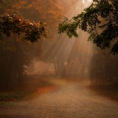 ~ crossroads ~