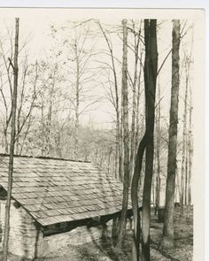 Jefferson Lake State Park - shelter house :: Ohio Guide Collection