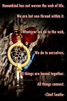 Native Chief Wisdom