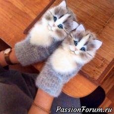 Lv Lietotāju Foto Galerijas – L Knitting Stitches, Knitting Patterns, Crochet Patterns, Mittens Pattern, Knit Mittens, Crochet Baby, Knit Crochet, Needle Felted Cat, Felt Cat