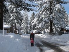 the snow globe: It's So Fluffy: Christmas 2010 in Lake Tahoe