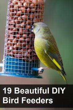19 Beautiful DIY Bird Feeders-comederos para pájaros