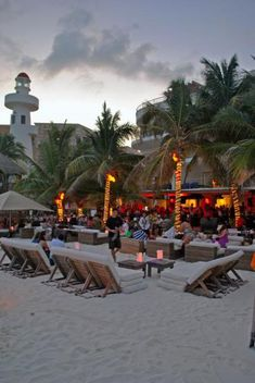 Zenzi Beach Club Playa del Carmen bar - night life
