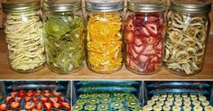 How To Make: Healthy Dehydrated Fruits