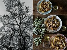 It's that golden time of the year again when I can finally make one of my favourite delicacies, acacia flower fritters. The English name is locust flowers, we call it fleurs d'acacia. Mimi Thorisson Manger