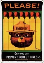 Smokey BearTin Sign Smokey Bear was born in 1944 when he was chosen by the U.S. Forest Service and the Wartime Advertising Council to succeed Walt Disney's Bambi as their fire prevention symbol.  An