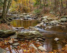 Digital Download: Autumn Stream photo