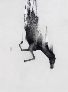 Falling Horses - KieranAntill's Portfolio - The Loop